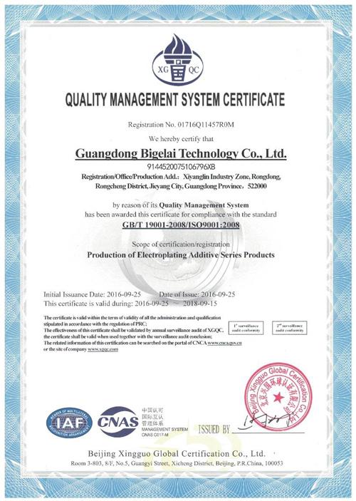 比格莱质量管理体系认证证书(英文)