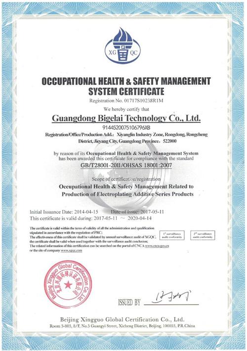 比格莱职业健康安全管理体系认证证书(英文)